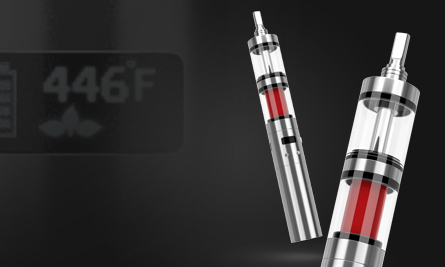 dry herb and oil vaporizer